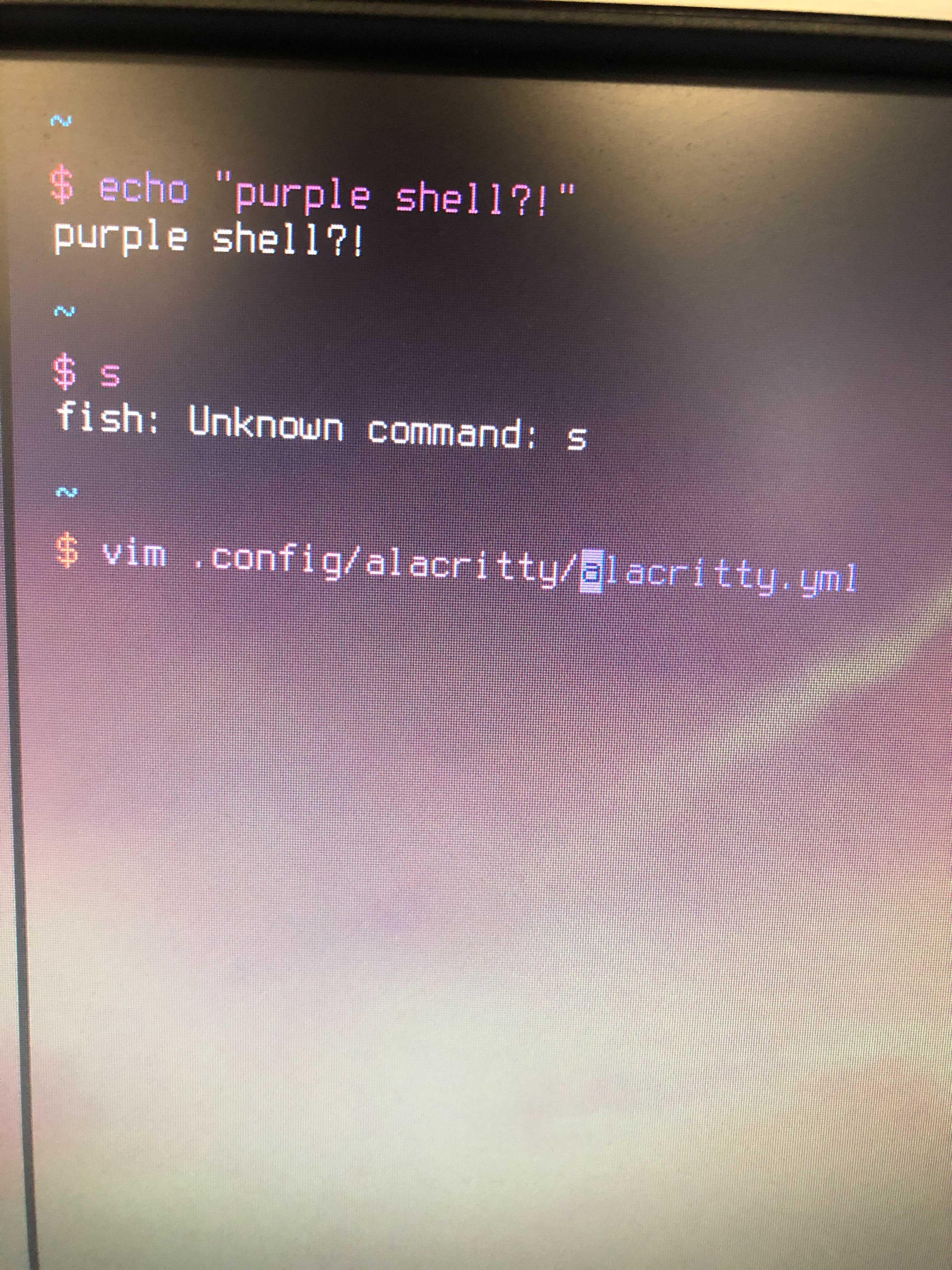 https://cloud-5hg28704f-hack-club-bot.vercel.app/0image_from_ios.jpg